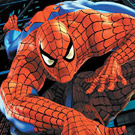 game Spiderman's Puzzle